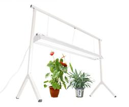 DUROLUX PLANT STAND RACK DLS842 WITH 4' 2-BULB T5 GROW LIGHT