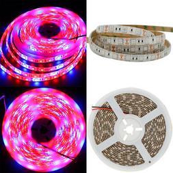 SMD 5050 LED Strip Grow Light Lamp Full Spectrum 3 Red 1 Blu