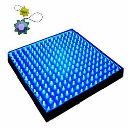 "New Square 12"" LED Grow Light System 225 Blue LED 14W + Hang"