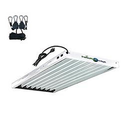 Hydroplanet T5 4ft 8lamp Fluorescent Ho Bulbs Included for I