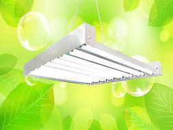 T5 HO Grow Light - 2 FT 16 Lamps - DL8216 Fluorescent Hydrop