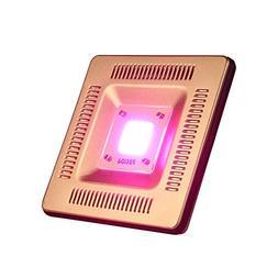Waterproof IP67 50W LED Grow Light Full Spectrum, New Techno